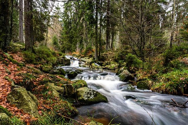 מסלולי טיול בצפון עם מים: כך תגלו מסלולים סודיים שקטים