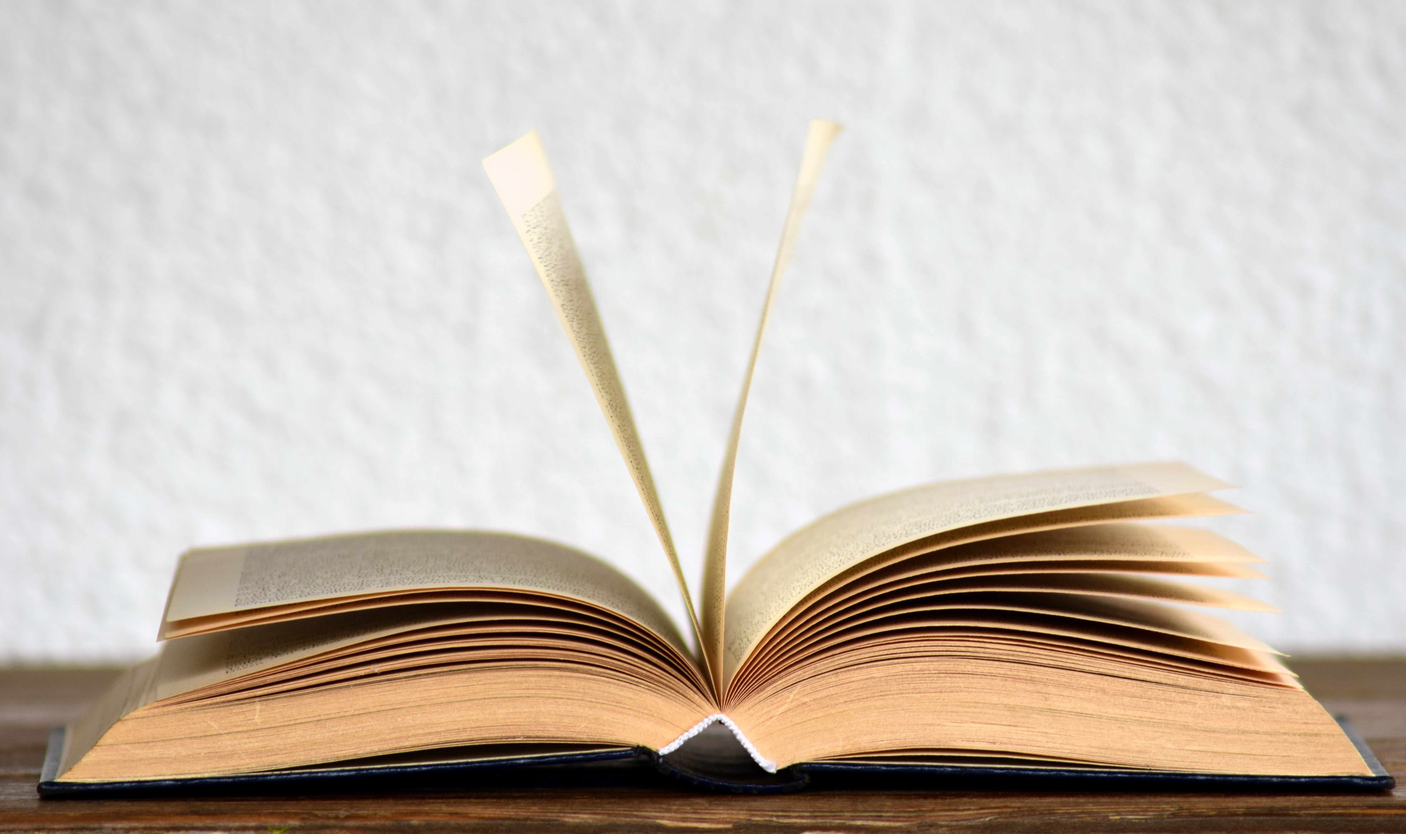איך תעצבו נכון את הכריכה של הספר שלכם?